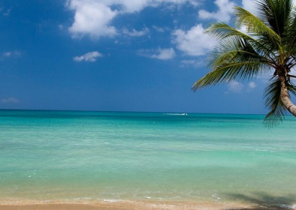 playas de dominicana